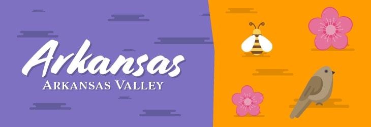 Arkansas Valley Region